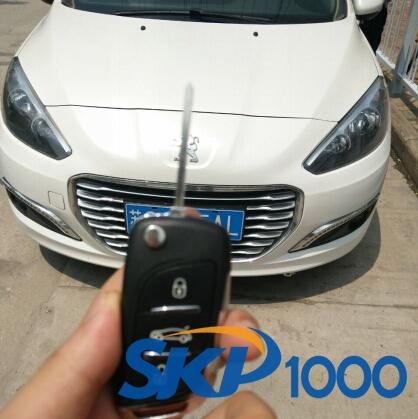 skp1000-peugeot-308-14