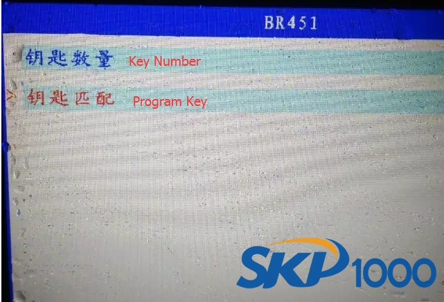 skp1000-program-smart-br451-key-6