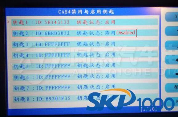skp1000-disable-bmw-523-key-13